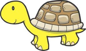 yellow_turtle1