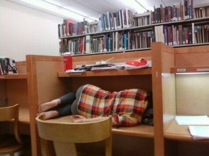 sleeping-in-library-12