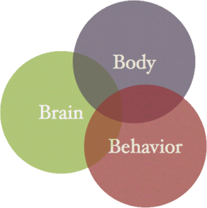 bodybrainbehavior-color