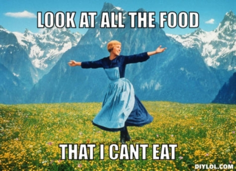 resized_sound-of-music-meme-generator-look-at-all-the-food-that-i-cant-eat-271a22
