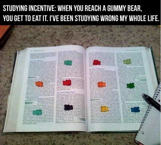 studying-incentive-gummy-bear